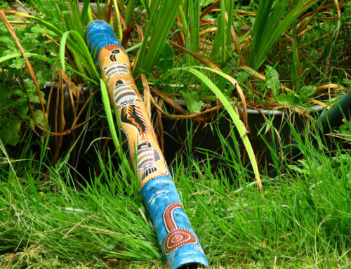 Film Music: Make your Own Didgeridoo and Play Along